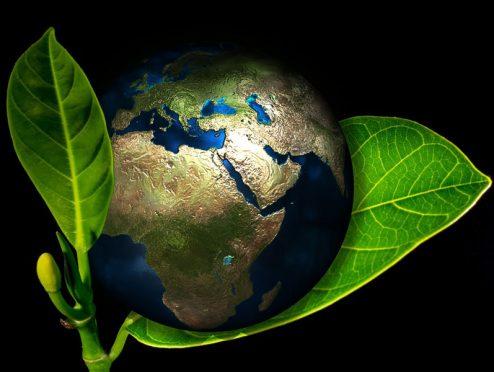 Gütesiegel für nachhaltige Publikumsfonds