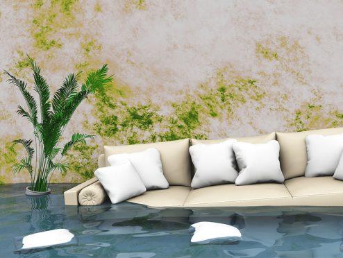 Rhion: neue Hausratversicherung mit Premiumtarif