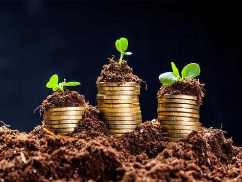 Grüne Fondsauswahl erweitert