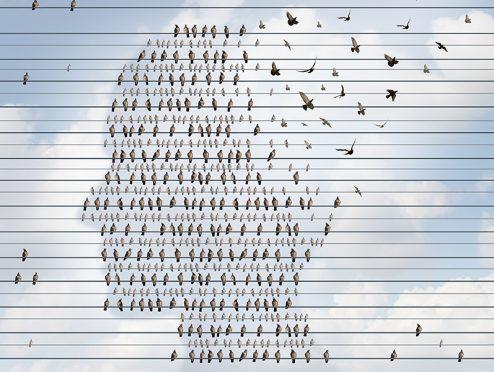 Demenz: Wege durch den Paragraphendschungel