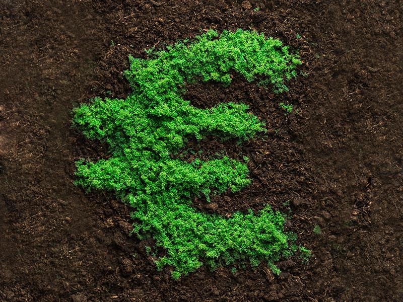 Anständig und nachhaltig Geld verdienen