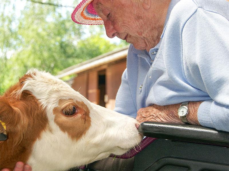 InterRisk: Aktiv für pflegebedürftige Senioren