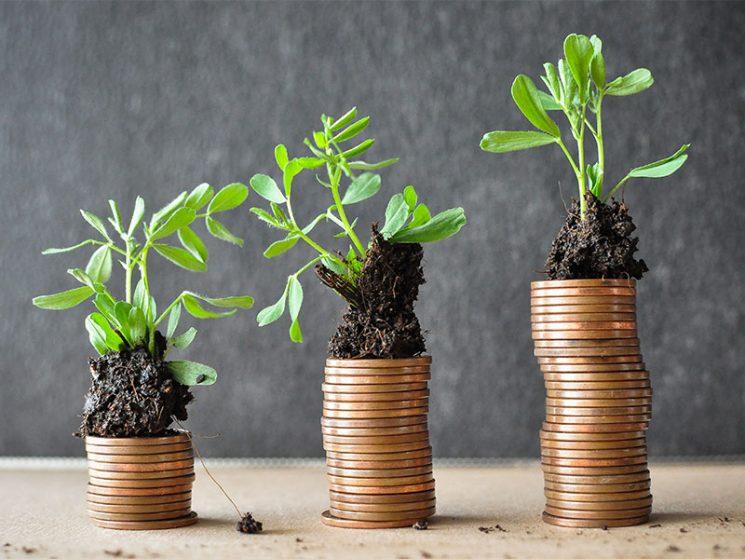 Nachhaltige Vermögensverwaltung auf Fondsbasis