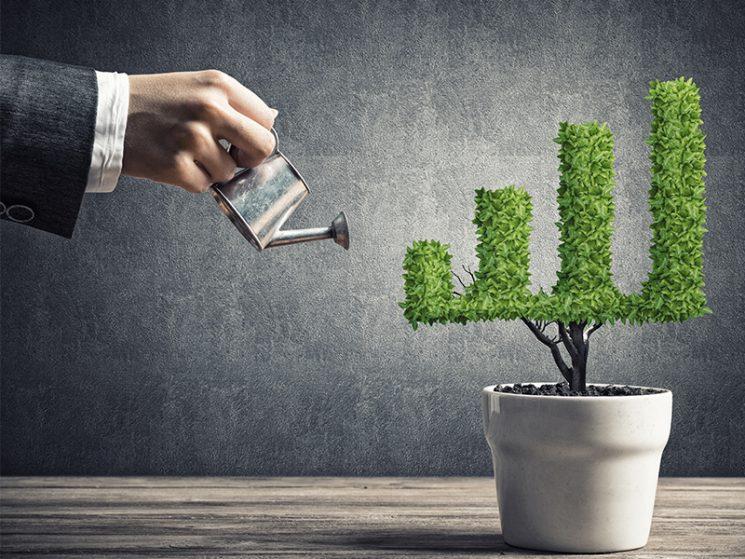 grün versichert: investieren mit gutem Gewissen
