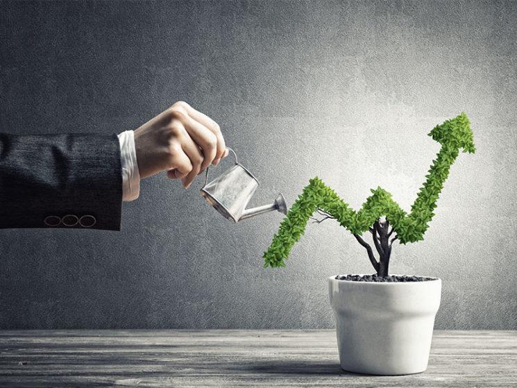 FNG-Siegel: nachhaltig investieren