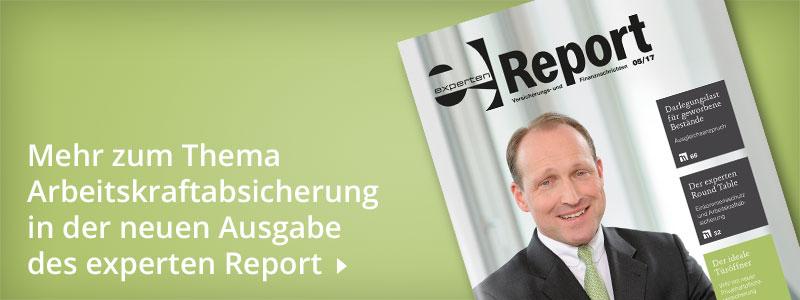 experten Report 05/17