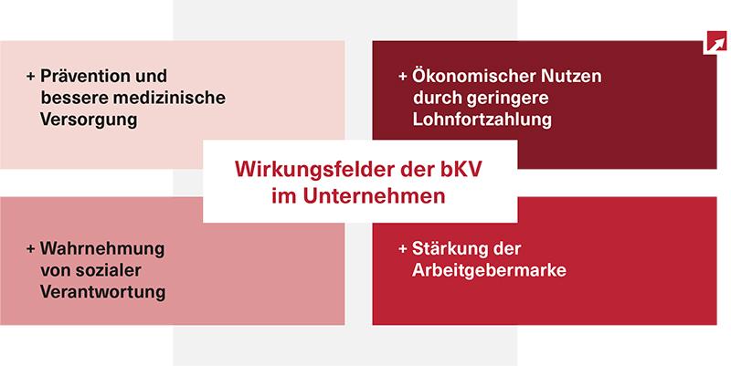 Wirkungsfelder-der-bKV-Grafik-2017-experten-netzwerk-GmbH