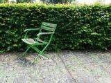Über Gartenhecken und ihre Höhe