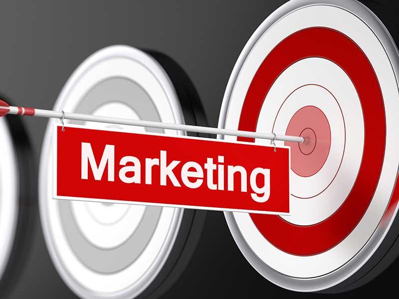 Das Marketing von PHV-Anbietern unter der Lupe