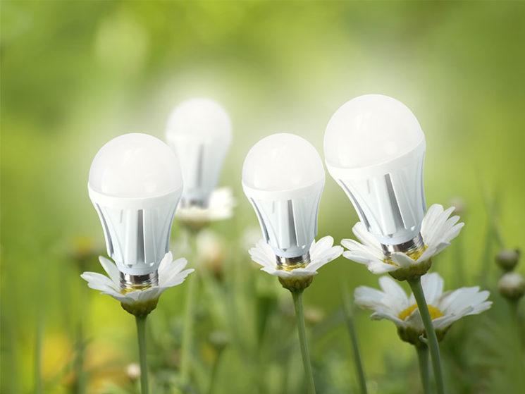 DIW-Modell für bessere Integration von erneuerbaren Energien