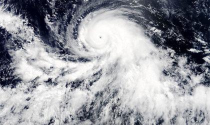 Hurrikankatastrophen: Fünf Fragen an den Versicherer