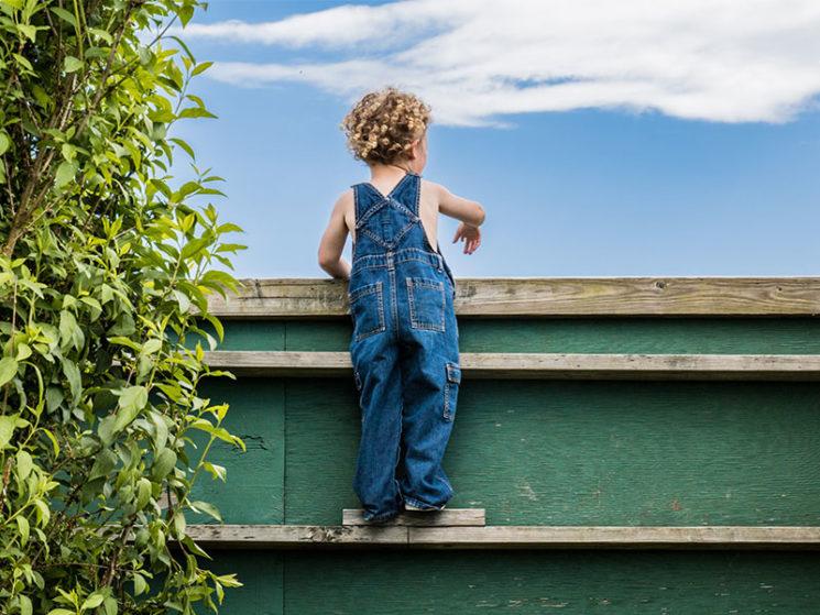 Wohngebäudeversicherung erfasst nicht Sichtschutzzaun