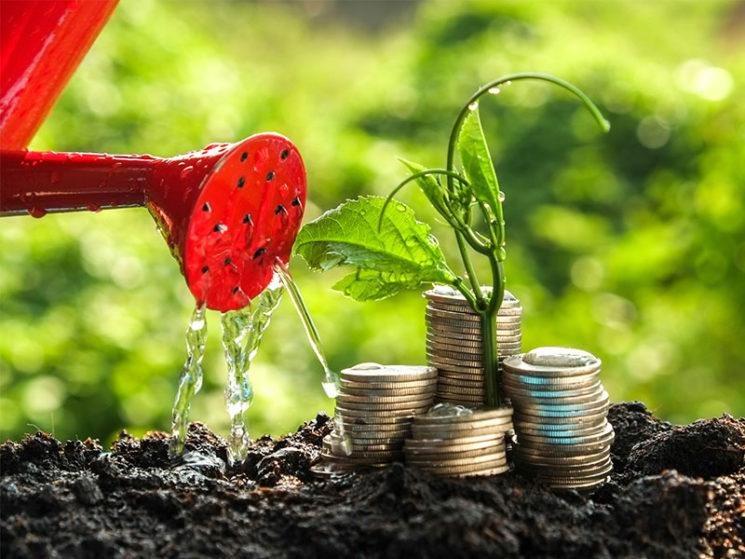 Global Impact: UBS legt Nachhaltigkeitsfonds auf