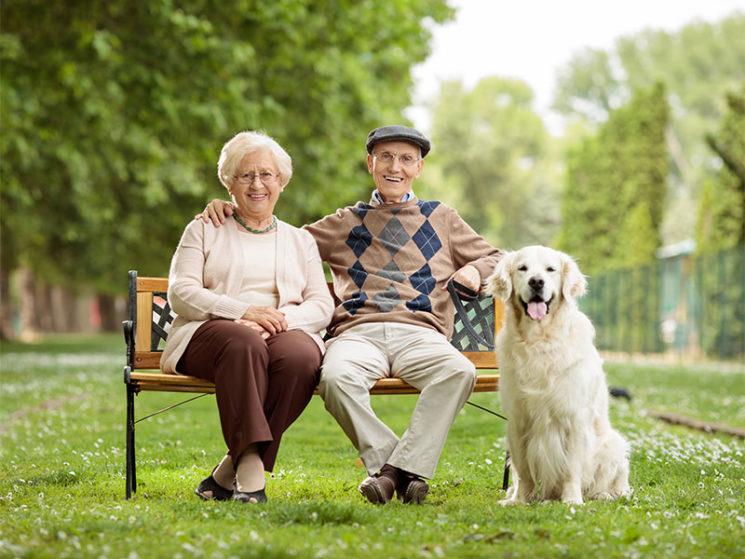 Bundesweit größter Rentenversicherungsvergleich