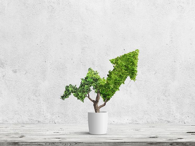 Kapitalanlagen der Lebensversicherer sind gewachsen