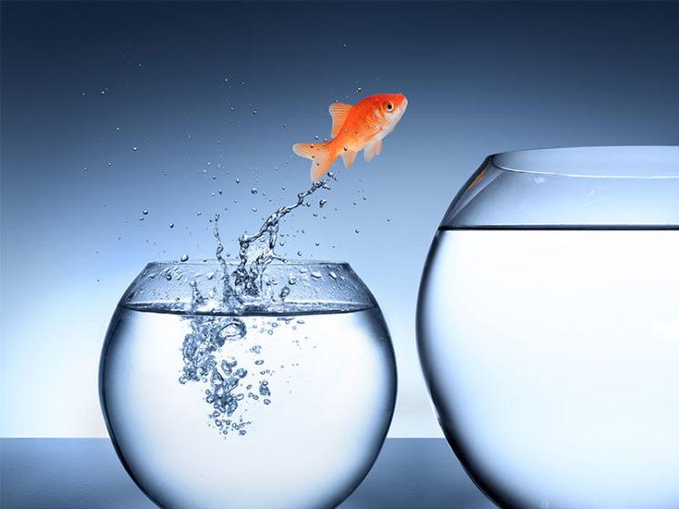 Stefanie Kresse: Versicherungsbranche ist wesentliches Wachstumsfeld