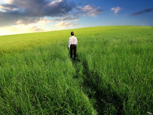 Pangaea Life erzielt über 4 Prozent Rendite im ersten Jahr