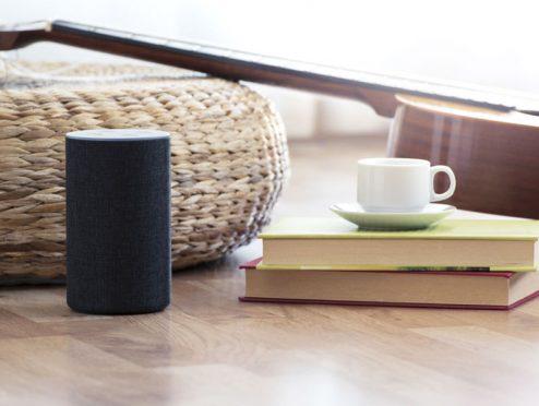 DFV erweitert Angebot über Amazons Echo