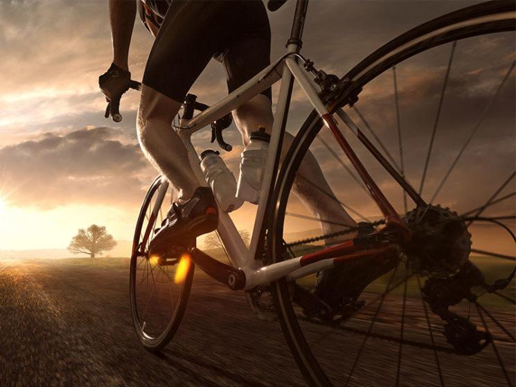Ammerländer: neue Produkte in der Fahrrad-Sparte