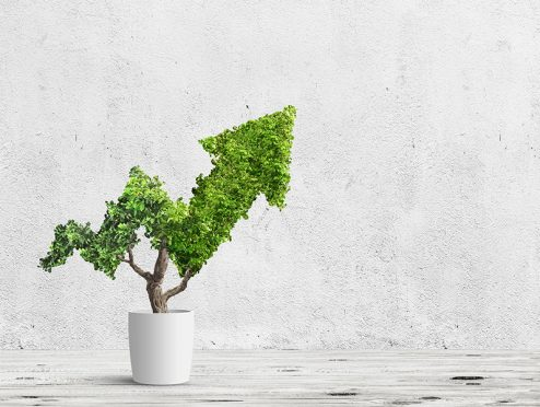 Die Zukunft ist grün – Nachhaltigkeit in der Versicherungsbranche
