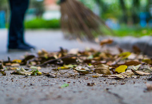 Sturz beim Beseitigen von Herbstlaub kein Arbeitsunfall