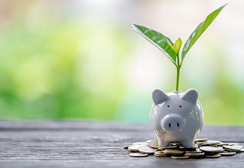 Nachhaltige Geldanlagen – kurzfristiger Trend oder Mainstream?
