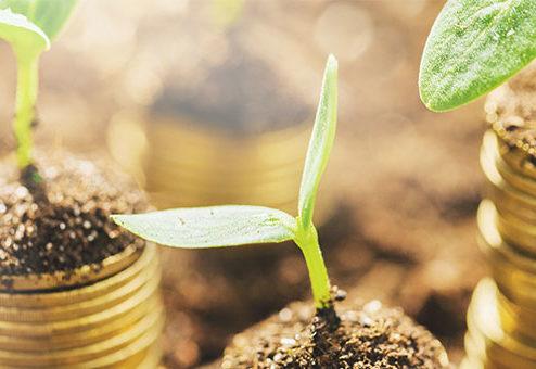 ONE bietet grün-versichert-Tarife an