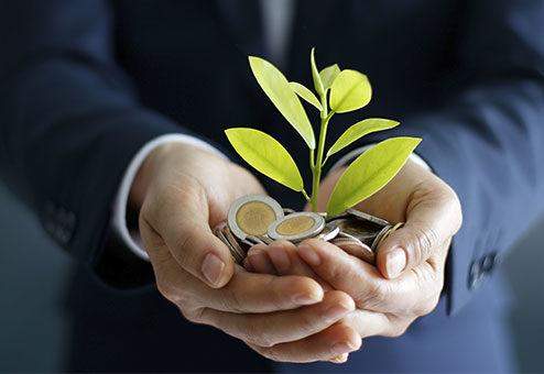 Frauen legen Wert auf Nachhaltigkeit bei der Geldanlage