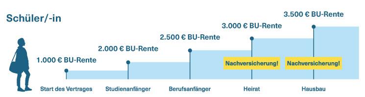 Grafik: Schüler und BU-Schuttz