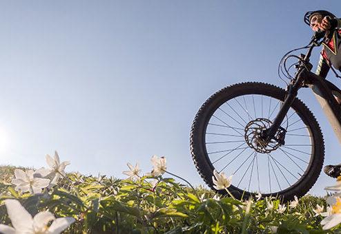 Drei wichtige Versicherungen für E-Bikes