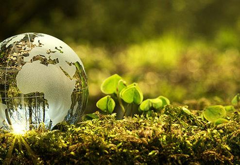 MORGEN & MORGEN prämiert nachhaltige Produkte aus der Finanzbranche