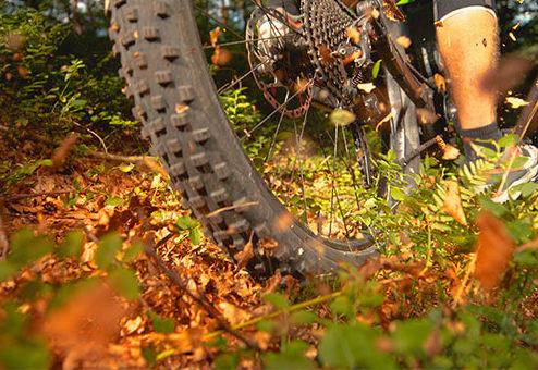 PROTECTONAUT startet flexible E-Bike-Versicherung