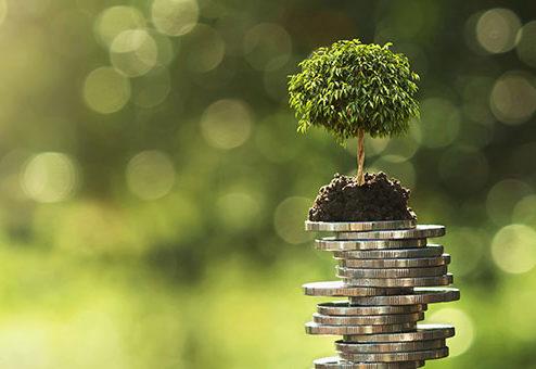 growney bringt nachhaltige Anlagestrategien auf den Markt