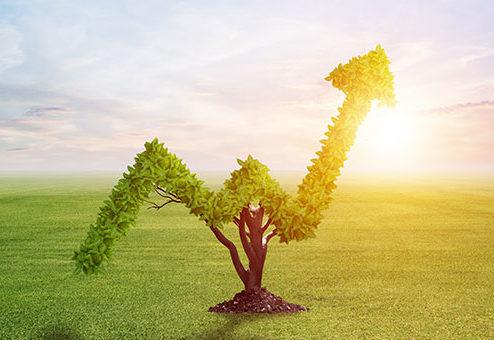 Rekordhoch bei nachhaltigen Anlagen