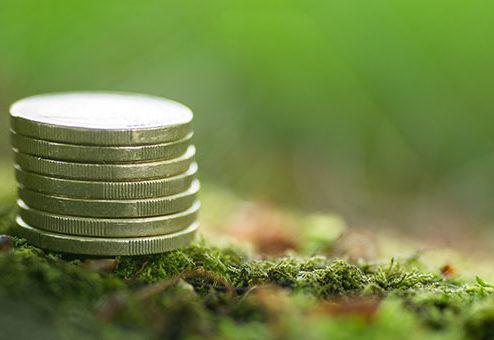 Pangaea Life: Beitragssenkung bei Hausrat- und Haftpflichtversicherung