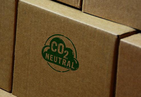 Fast jedes zweite Unternehmen in Deutschland will perspektivisch klimaneutral werden