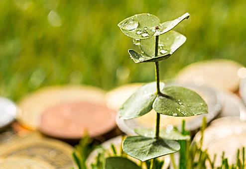 Nachhaltiger Ratenkredit für Privatkunden