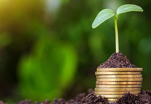 Fondsgebundene Rentenversicherungen: Nachhaltigkeit ist nur teilweise vorhanden