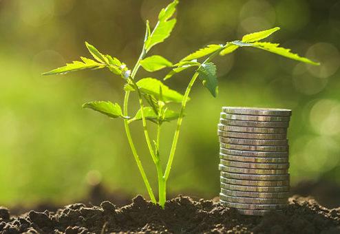 Neue nachhaltige Geldanlagekonzepte der BfV Bank für Vermögen AG