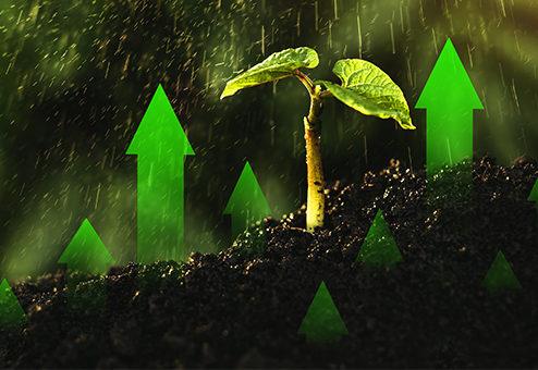 Startup-Report 2020: Nachhaltigkeit ist ein Top-Thema